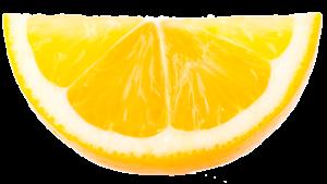 fruit-lemon-slice